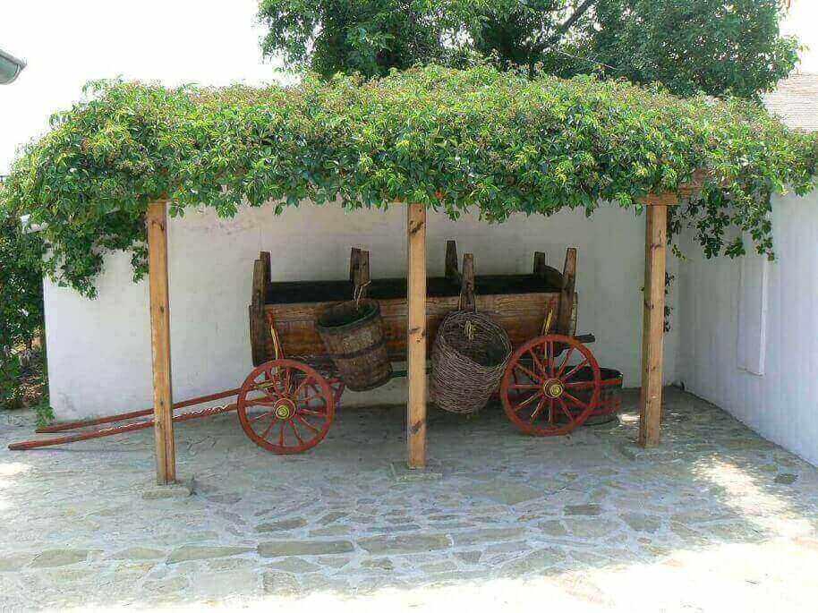 Weinreise an der Schwarzmeer Region Bulgariens