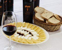 DiVes Winery Weinverkostung