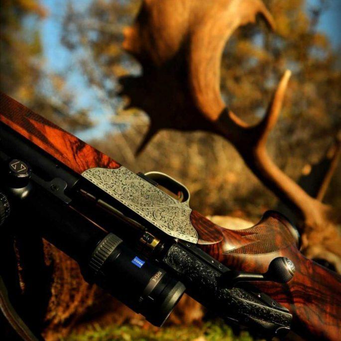 Jagd 2020- (2)